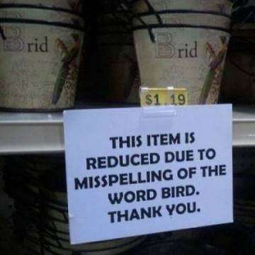 Fail-spell-of-word-bird