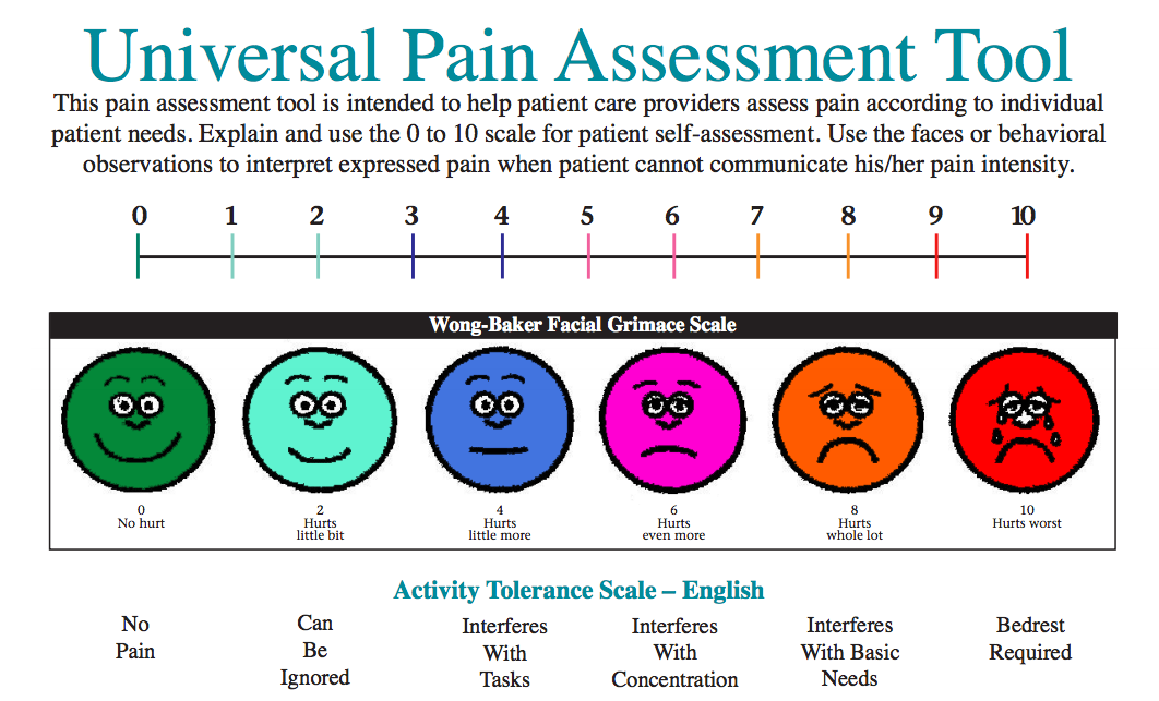 PainAssess