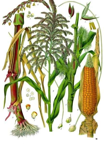 FROM:  http://tiny.cc/f8xcvx
